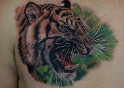 tatuaj-tigru-tiger-tattoo,tatuaje-constanta