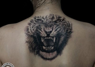 tiger tattoo,tatuaj tigru